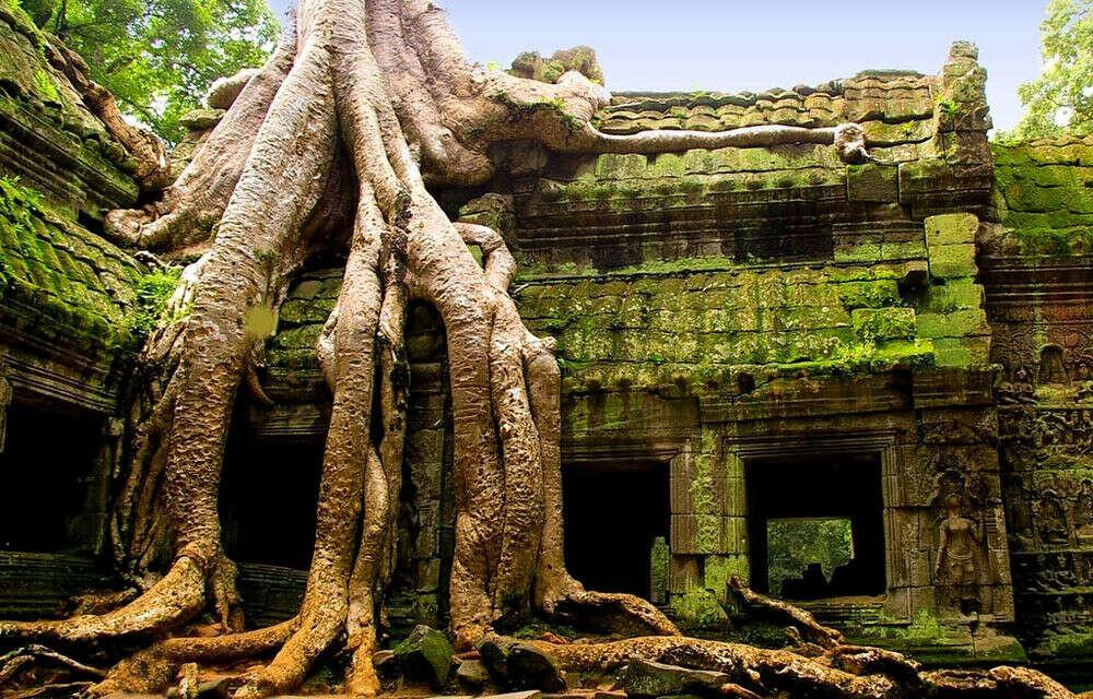 В Камбоджу