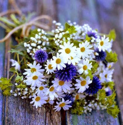 Букетик полевых цветов