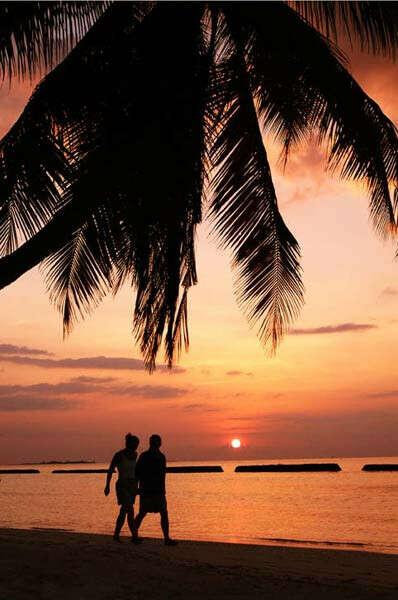 кругосветное путешествие на медовый месяц