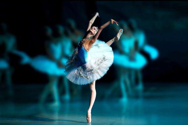 """Сходить на балет """"Лебединое озеро"""" (П. Чайковский)"""