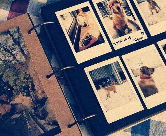 Сделать фотоальбом