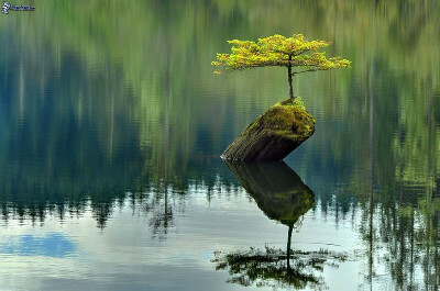 Духовно расти