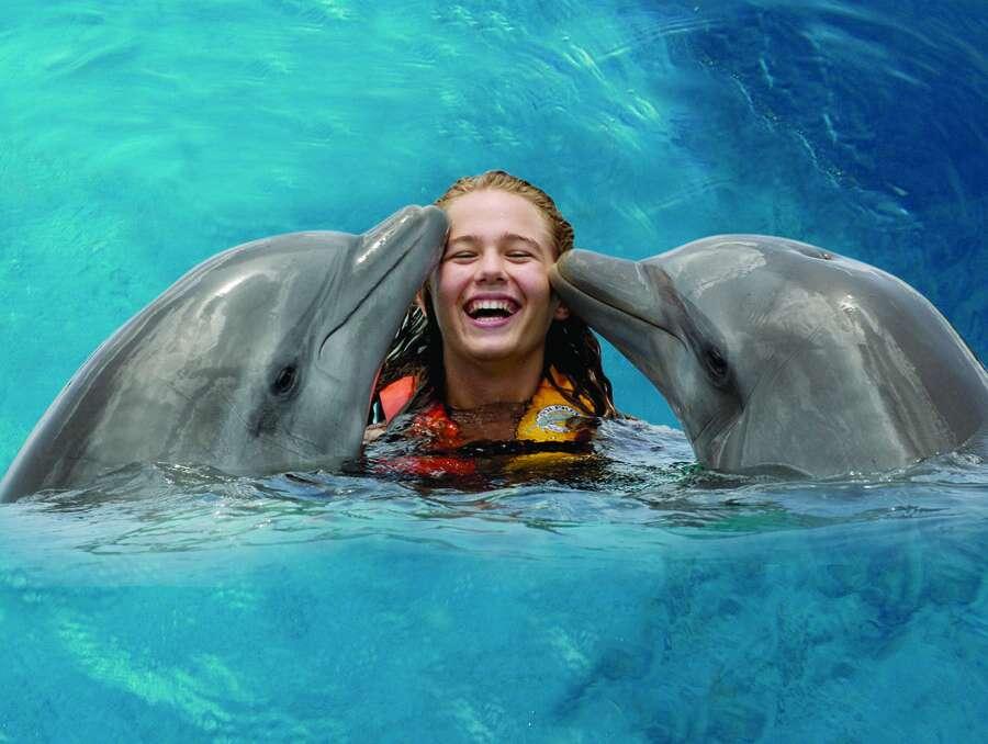 Поплавать и погладить дельфинов