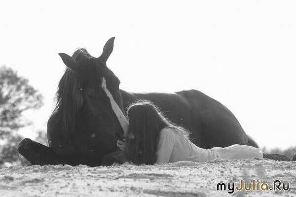 Быть ближе к лошадям