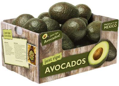 Коробка авокадо