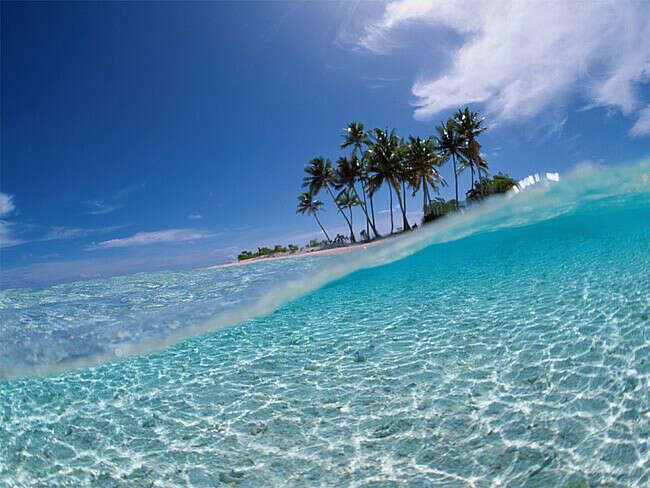 Поплавать в океане