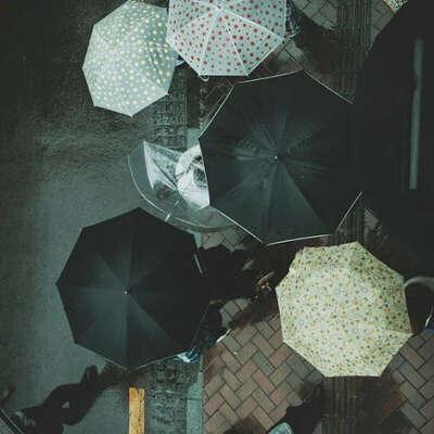 Купить черный зонт