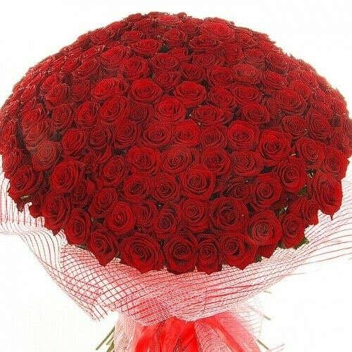 Букет из 150 роз