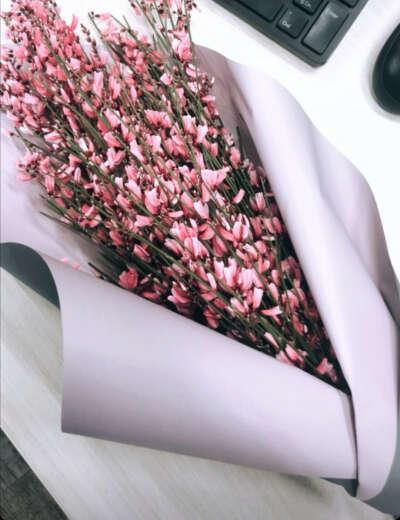 Букет цветов Гениста