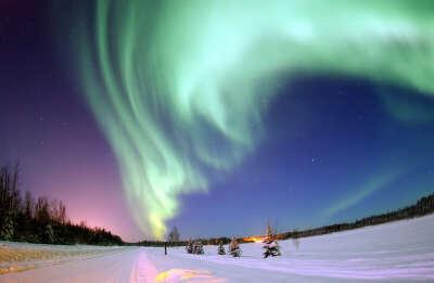 .....Я хочу увидеть Северное Сияние, и медведей, и айсберги, и остальное.