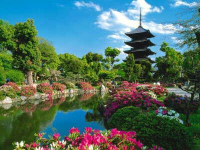 Хочу побывать в Японии