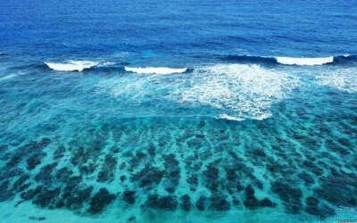 Искупаться во всех морях и океанах
