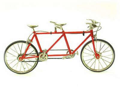 покататься на 2-местном велосипеде