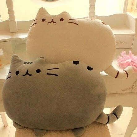 Хочу подушку кота