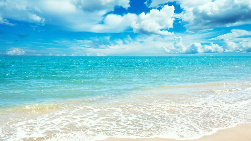 провести месяц у теплого моря