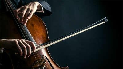 Научиться играть на виолончели