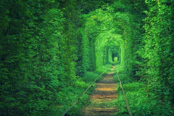 Тоннель любви в городе Клевань