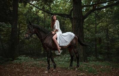 Конная прогулка в лесу