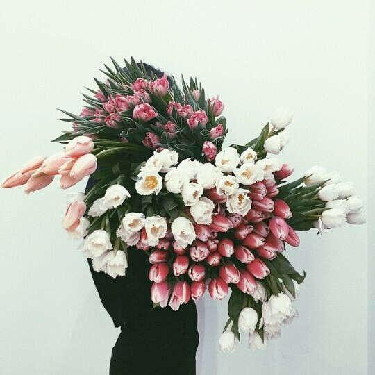 охапку тюльпанов