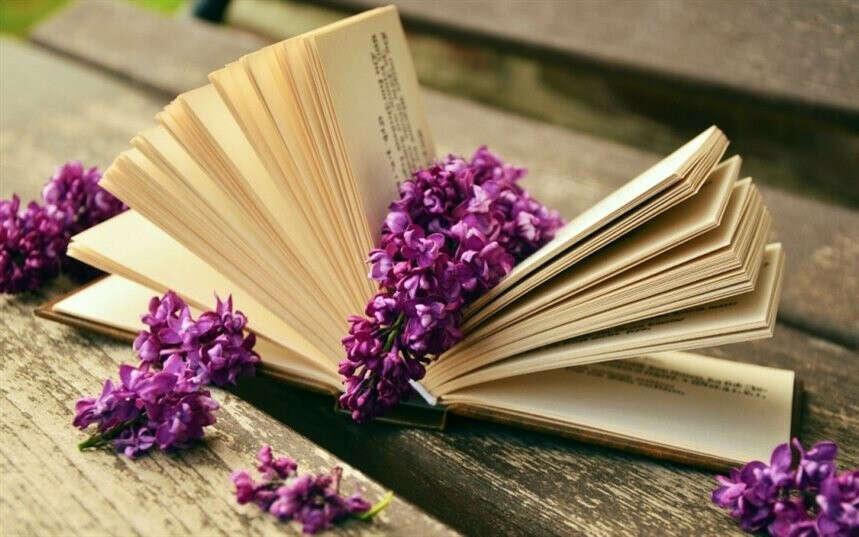 Читать больше интересных книг