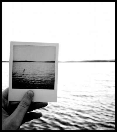 Приобрести Polaroid и сделать фото