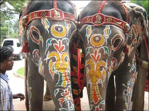 Побывать в Индии