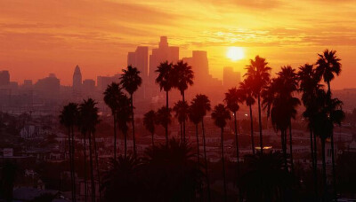 Хочу в Лос-Анджелес
