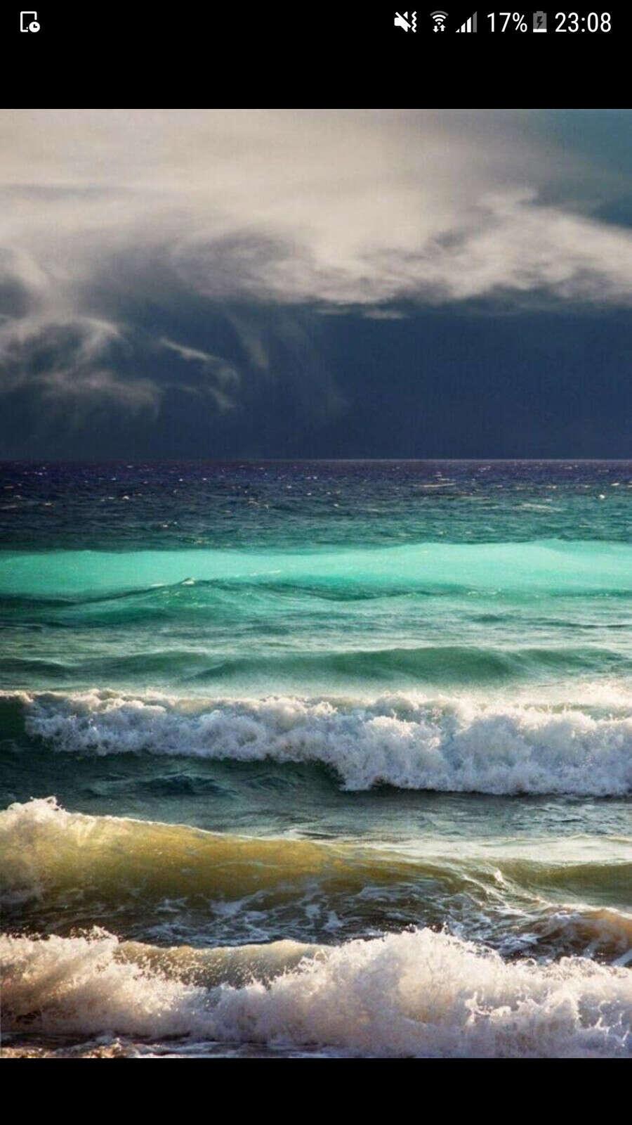 Пожить месяц у моря