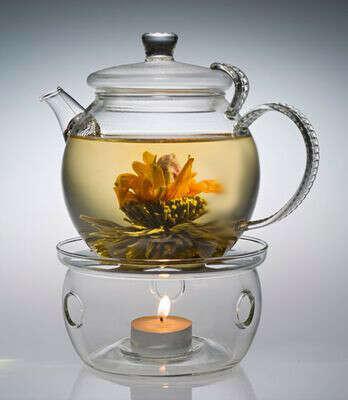 прозрачный заварочный чайник с подогревом