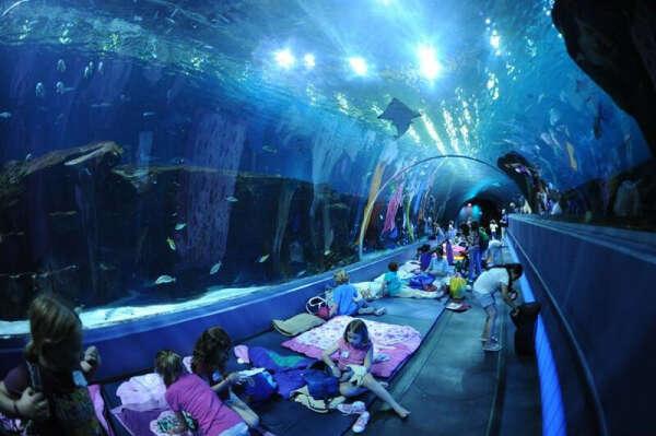 """Посетить океанариум """"The Georgia Aquarium""""."""