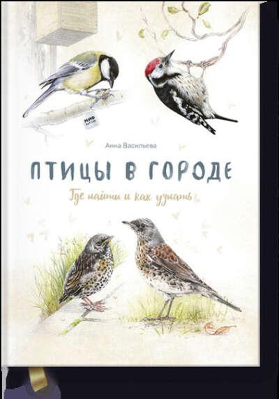 Птицы в городе (Анна Васильева)
