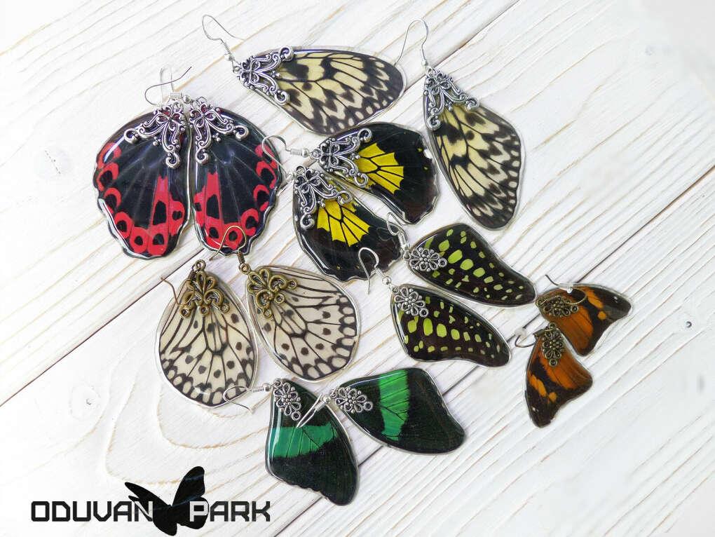 серьги-крылья бабочки