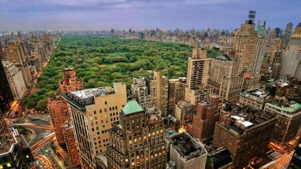 Устроить утреннюю и вечернюю пробежку вокруг Central Park