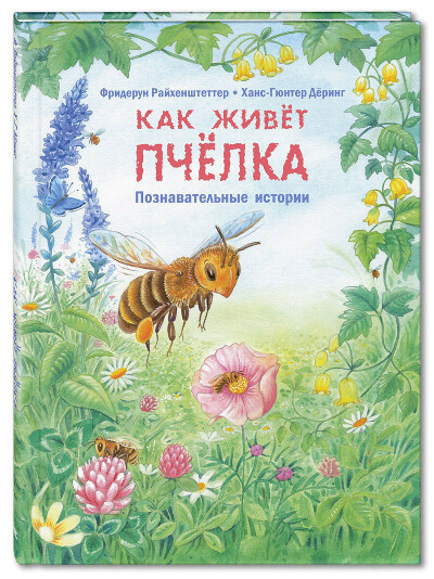 Как живёт пчёлка. Познавательные истории, Энас-Книга