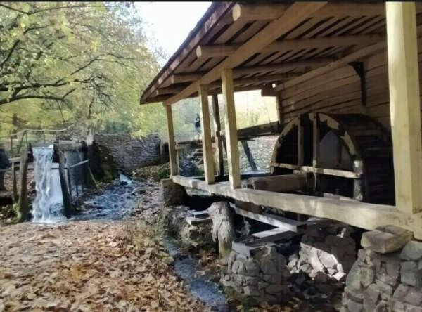 Посетить водяную мельницу в воронежской области
