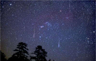 Хочу увидеть звездопад, целый поток падающих звезд.