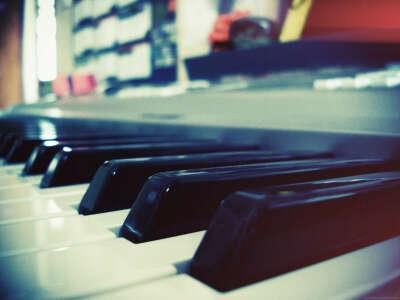 цифровое пианино или синтезатор