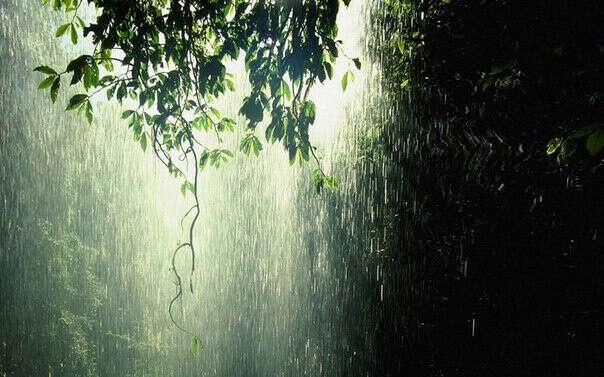 Погулять под дождём)