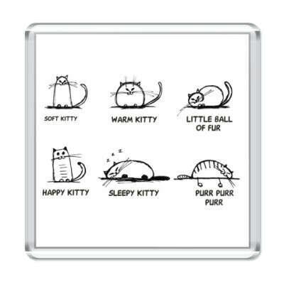 Магнит квадратный Песня Шелдона про котенка