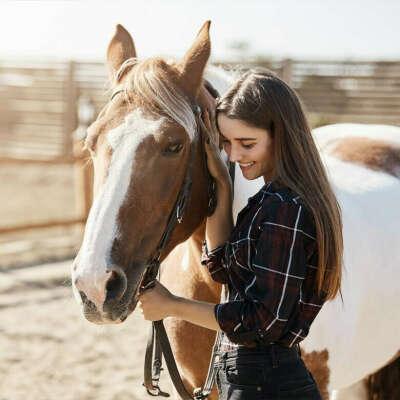 Прогулка на лошади и общение