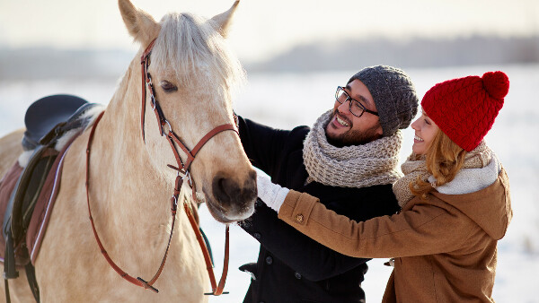 Катание на лошадях для двоих - Киев, подарочный сертификат на прогулку на лошадях — bodo