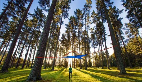 Палатка Tensile Flite+ Tree Tent