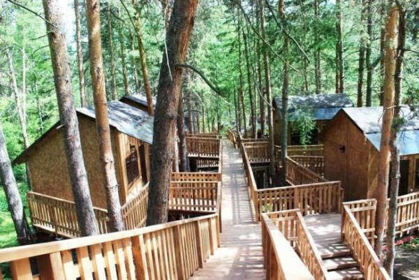 Отдых в Лесной Сказке
