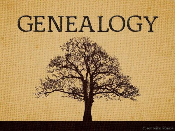 MyHeritage ДНК | Узнайте о своем происхождении и своих предках | Тесты ДНК - MyHeritage