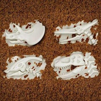 Формы для выпечки Fossil Food (4 шт.)