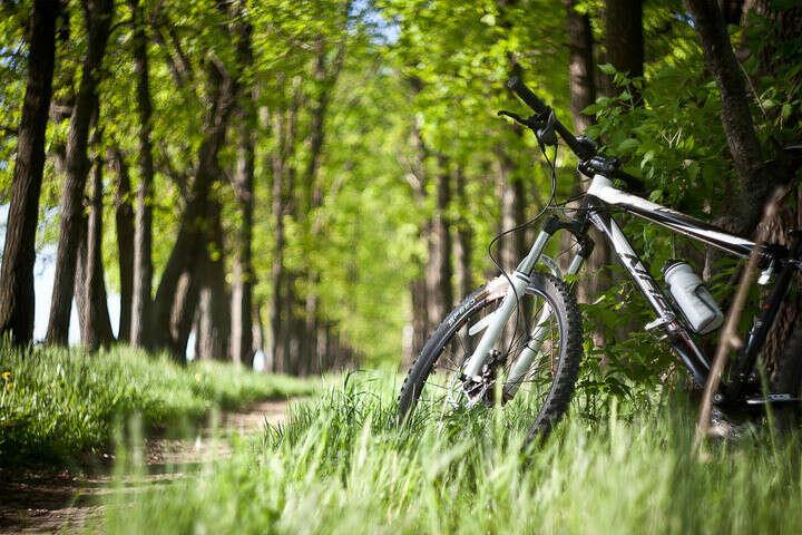 Велозаезд на озёра