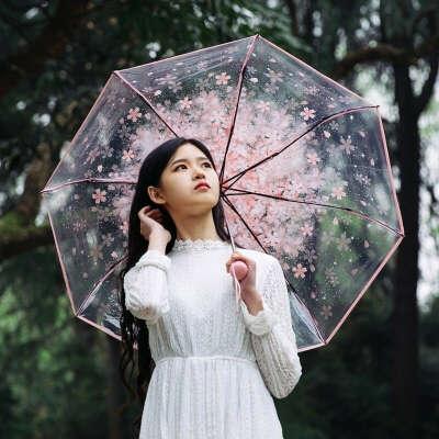 Прозрачный зонт с сакурой