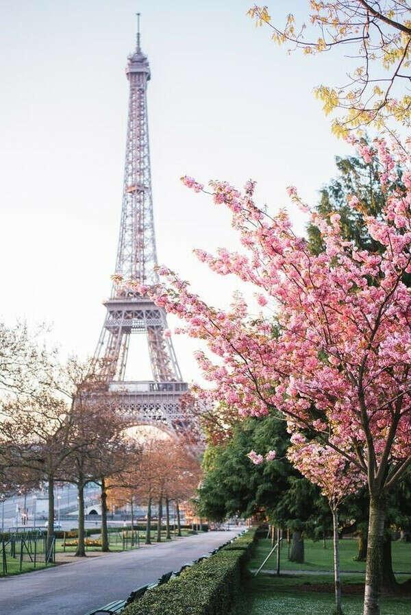 Вернуться в Париж