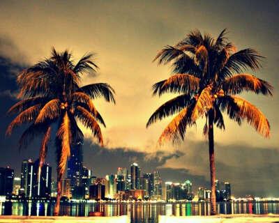Побывать в Майами