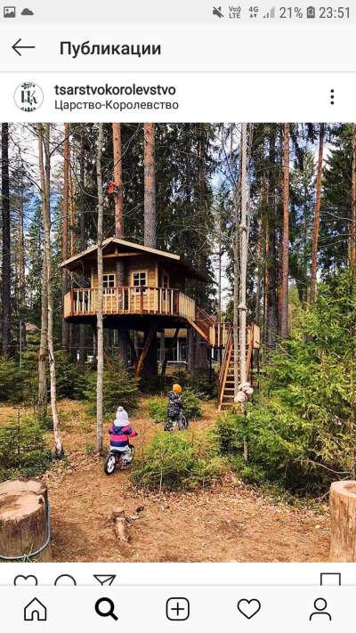 провести пару дней на базе отдыха в лесу